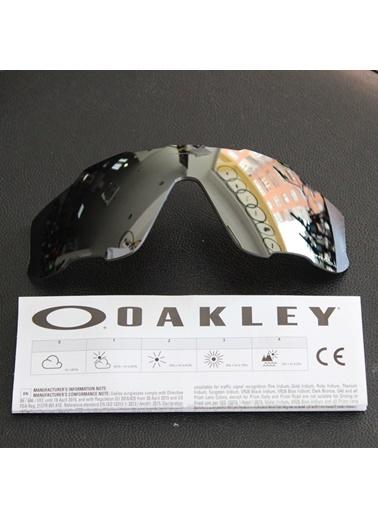 Oakley Oakley Jaw Breaker Prizm Polarized Lens 92902831 Naturel  Renkli